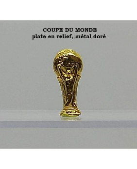 Coupe du monde relief