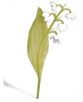Set of 5 sprigs of easter lily of the valley