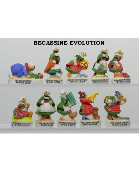 Becassine evolution