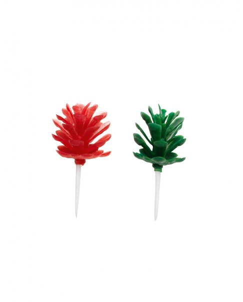 Green and red fir cones X6