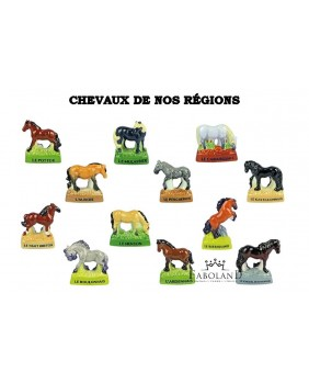 Horses from our regions