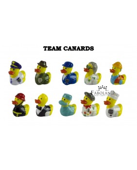 Ducks team