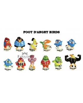 Foot d'angry birds