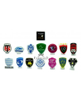 TOP 14 - 2019 / rugby FRANCE