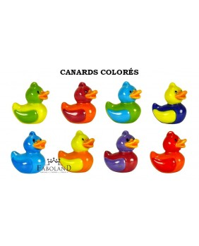 Canards colorés