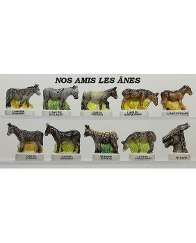 Our friends the donkeys - box of 100