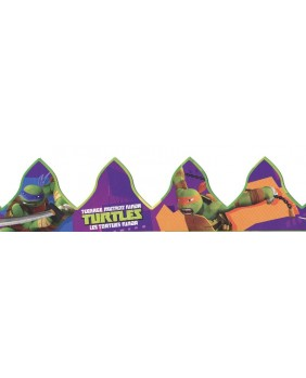 The ninja turtles crown