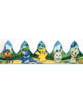 Pokemon crown