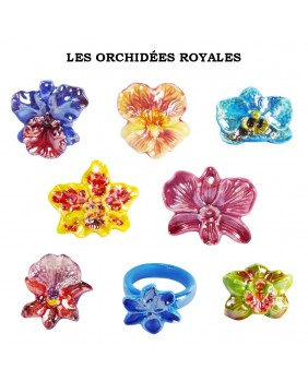 The royal orchids - box of 100