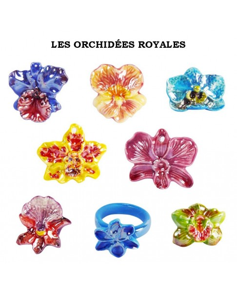 The royal orchids